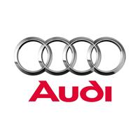 Audi Carbon Fiber Hood